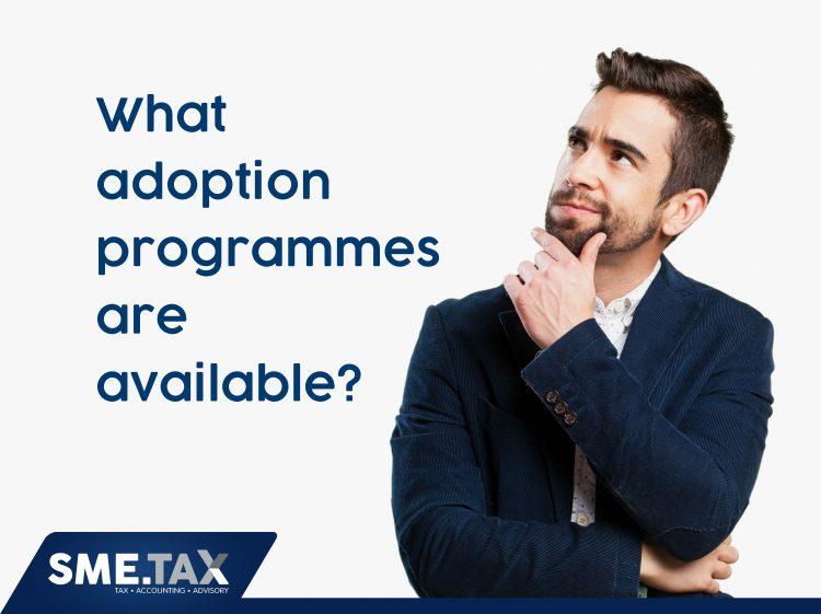 sme.tax-adopt-an-sme-presentation_page_17